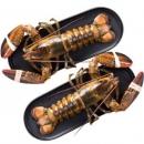 wecook 味库 加拿大大龙虾(波士顿龙虾) 450-550g 2只装179元包邮