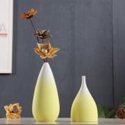 Hoatai Ceramic 华达泰陶瓷  手工陶瓷花瓶  A款+干花 99元包邮99元包邮