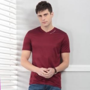 Hodo 红豆 DMHFT412S 男士V领T恤 *2件