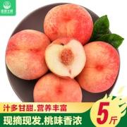 预售:香凝 新鲜水蜜桃 5斤                                       19.8元包邮(需用券)¥20