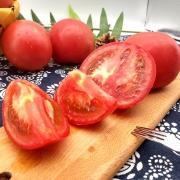 最爱佳果 新鲜沙瓤 普罗旺斯水果西红柿 5斤