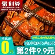 鲜活现货,洪泽湖 新鲜六月黄大闸蟹16只礼盒装(公母随机1.3~1.8两)