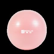 MOHOLLAS 莫号 10028 瑜伽球 55cm 送小球+气筒+气塞+气拔 15元包邮(需用券)¥15