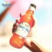 Hoegaarden 福佳 精酿 玫瑰红啤酒248mlx24瓶