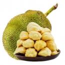 梅珍 新鲜菠萝蜜 1个 单果9-10kg/18-20斤69.9元包邮