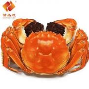 【三件68元】鲜活六月黄大闸蟹
