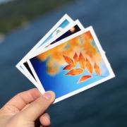 KINGEON 卡宜 照片冲印 乐凯金圣莱绒面 3寸60张 6.8元包邮(需用券)