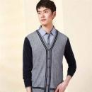 Hodo红豆 DXHOM094S 男士针织衫 2件66元包邮(合33元/件)