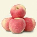 17日10点:御品一园 山西嘎啦苹果 10斤装14.9元包邮(前500件)