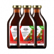 88VIP、双11预售:Salus 铁元 红版 补铁补血营养液 500mlx3瓶