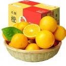壹农壹果 湖南麻阳冰糖橙 毛重5斤9.8元包邮