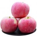 17日10点:御品一园 山西冰糖心红富士苹果 10斤16.8元包邮(前2000件)