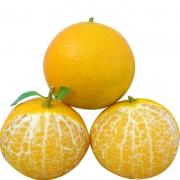 ¥19.8 正宗广西武鸣皇帝柑现摘新鲜水果中大果净重9斤带箱10斤5斤¥20