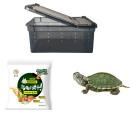 NOMOYPET 活体小乌龟+乌龟盒+20g 龟粮 5.8元包邮(需用券)¥6