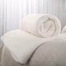 J.H.Longess 全网 棉胎被芯 棉被 200*230cm 6斤148元包邮(用券减50元)