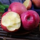 日尝 陕西红富士苹果 冰糖心 4500g 果径70-75mm 18.8元包邮(需用券)¥19