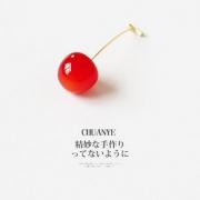 CHUANYE 川野 红色樱桃胸针