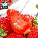 王小二 当季牛奶草莓 5斤 59.9元包邮¥60