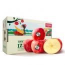 有券的上:农夫山泉 阿克苏苹果 单果径85-89mm 3.6kg *4件 182.88元包邮(需用券)¥183