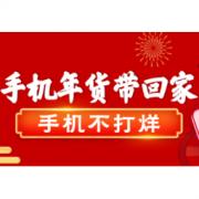促销活动:苏宁易购 手机年货带回家