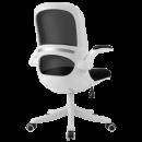 喵住标准,耐用10年,出口美国:爱意森 靠背电脑椅AYS-808 209元起包邮,过年正常发货¥209