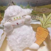 bunnies by the bay 小羊毛绒公仔29元包邮(需用券)