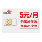 Chinaunicom中国联通大王卡 40GB 腾讯系应用系免流量