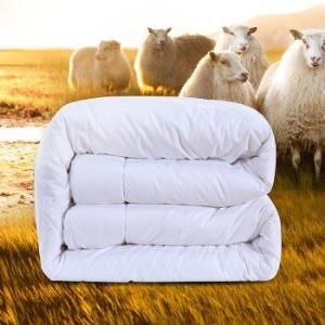FUANNA 富安娜 进口羊毛混合双人被芯 230*229cm