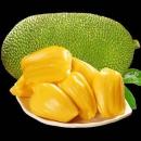 熟果甜 海南三亚菠萝蜜 10-15斤 精品果39.95元