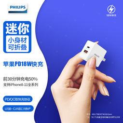 PHILIPS 飞利浦 DLP4321C 1A1C 充电器 18W