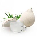PLUS会员:静益乐源 椰皇椰白 新鲜椰青水果 8个装 单个约1.3斤49.9元包邮