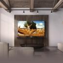 LG OLED55B9FCA 55英寸4K OLED智能电视