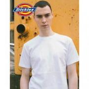 Dickies 帝客 DK006083 男款纯色T恤