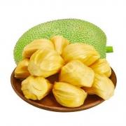 8日0点、京东PLUS会员:京觅 海南黄肉菠萝蜜1个 16-20斤19.9元(需用券)
