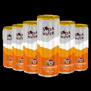 88VIP、有券上:北冰洋 百香果味苏打汽水 330ml*6听 碳酸饮料饮品 *4件 79.82元包邮(双重优惠)¥80