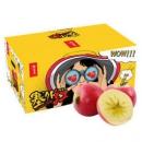 京东PLUS会员:京觅 塞外红 特级阿克苏苹果 果径80mm-85mm 10斤装 *4件231.28元包邮(双重优惠)