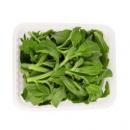 NANGUOXIANSHENG 新鲜冰草菜水晶菜 1.5斤 *2件29.6元(合14.8元/件)