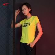 断码特惠:赛琪 女士休闲 T恤 短袖
