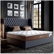 AIRLAND雅兰床垫 舒睡尊享 旗舰新品双层乳胶独袋弹簧豪华垫层床垫 24cm2999元