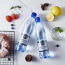 SHMAKOVSKAYA 俄罗斯原瓶进口矿泉水 500ml*6瓶12.9元包邮(需用券)