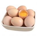 晨诚 农家散养土鸡蛋 40枚18.8元包邮(需用券)