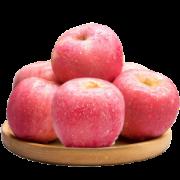 京东PLUS会员:鑫富百 精选洛川红富士苹果 75-80mm 500g *5件24.9元包邮(多重优惠,合4.98元/件)
