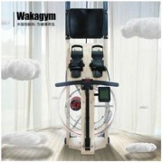 wakagym 哇咖 德国专利5挡调节 北美白蜡木 水阻划船机