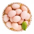 草帽熊 新鲜农家自养土鸡蛋 30枚16.9元包邮