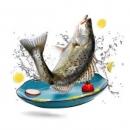 PLUS会员:海名威 冷冻鲜蒸三去海鲈鱼(去鳃去鳞去内脏)450g 1条*5件89.65元(需用券,合17.93元/件)