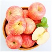 京觅 烟台红富士苹果 一级铂金果 单果190-240g 5kg *3件
