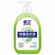 霸王 抑菌洗手液(金银花滋润型)500g