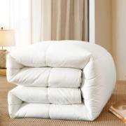 2日0点:水星家纺 澳洲羊毛抗菌冬被 200*230cm179元(需用券)