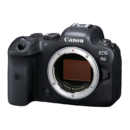 Canon 佳能 EOS R6 全画幅微单 4K视频拍摄 配合镜头实现双重8级防抖 动物检测