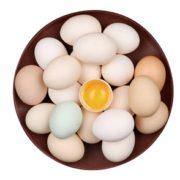 PLUS会员限地区! 仓帝 新鲜土鸡蛋 10枚装